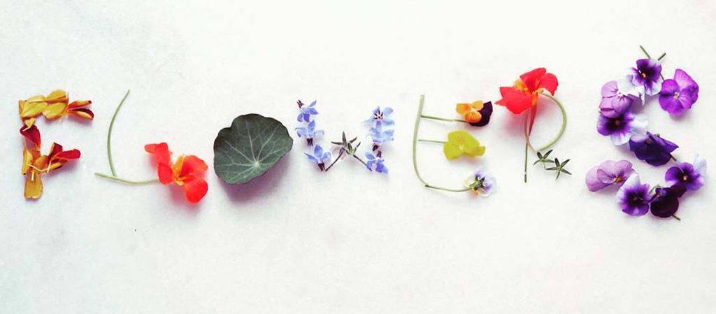 βρώσιμα λουλούδια,βρώσιμοι άνθη ,χονδρική,nature's fresh , horeca