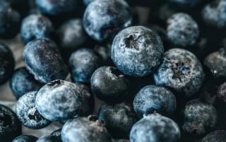 μπλούμπερυ,μύρτιλλο,blueberry