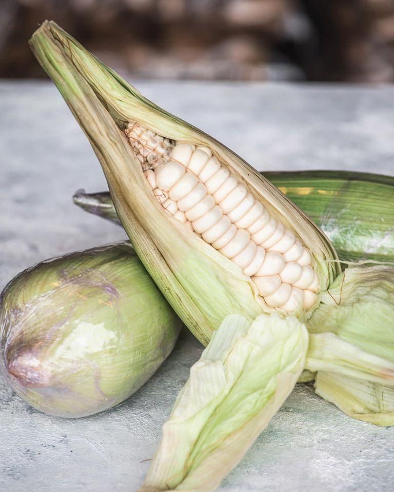 Τσόκλο,Choclo, peruvian corn,χονδρική,nature's fresh,horeca