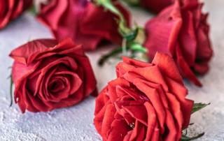 βρώσιμα τριαντάφυλλα, βρώσιμα λουλούδια