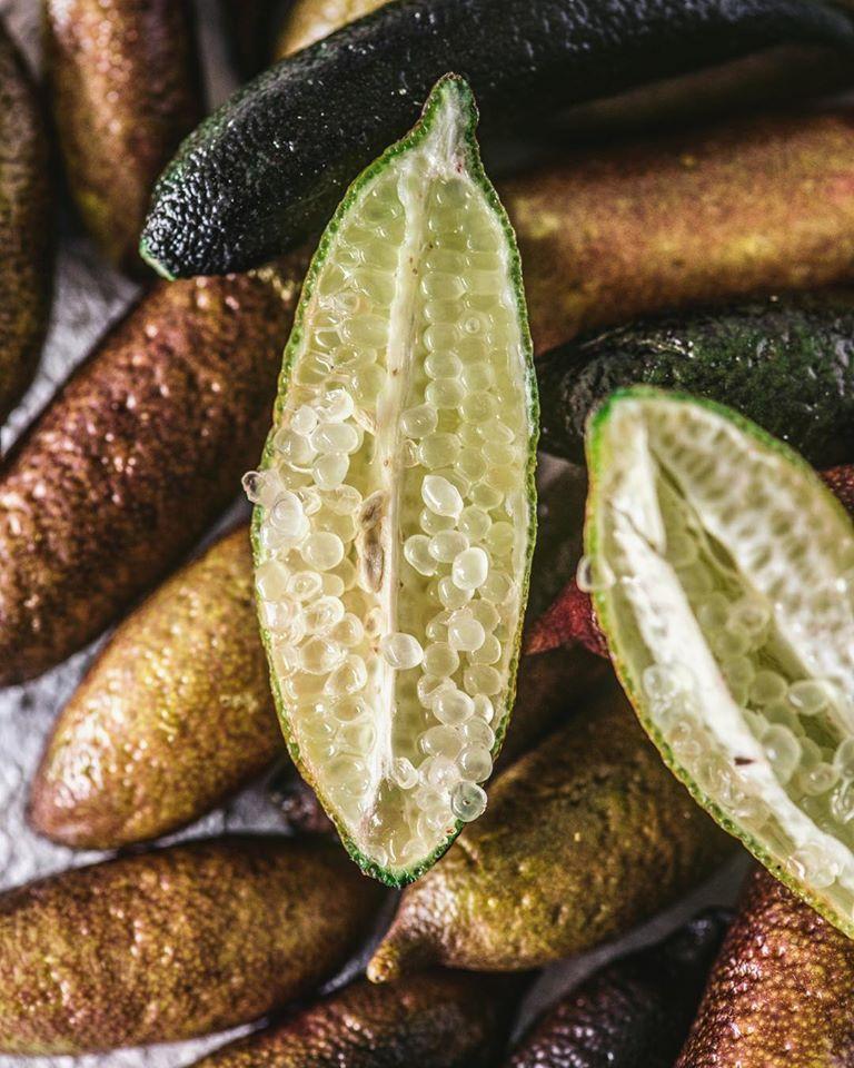 φίνγκερ λάιμ,finger lime,nature's fresh,χονδρική
