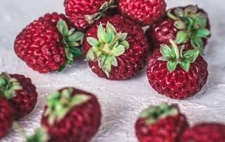 φράουλες άγριες,strassberry,φράουλα άγρια,χονδρική,τροφοδοσία,horeca,nature's fresh