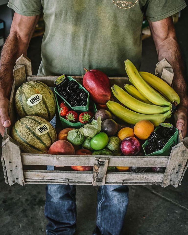 φρούτα,frouta, nature's fresh, horeca,χονδρική,trofodosia