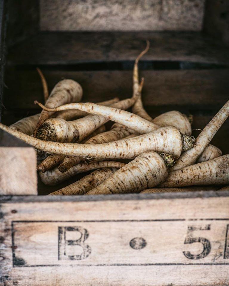 μαιντανόριζα, parsleyroot,maintanoriza-parsleyroot