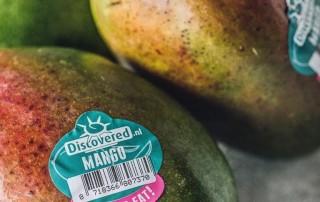μάνγκο,mangο,