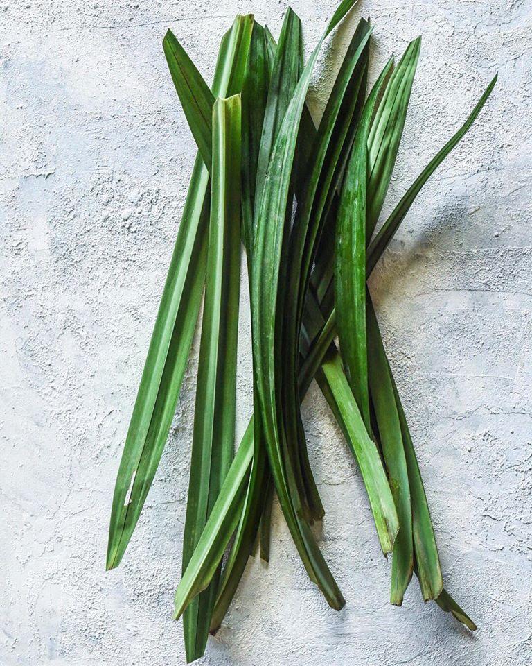 pandan leaves, πάνταν λιφς,φύλλα πάνδαμου,χονδρική,τροφοδοσία,horeca,nature's fresh
