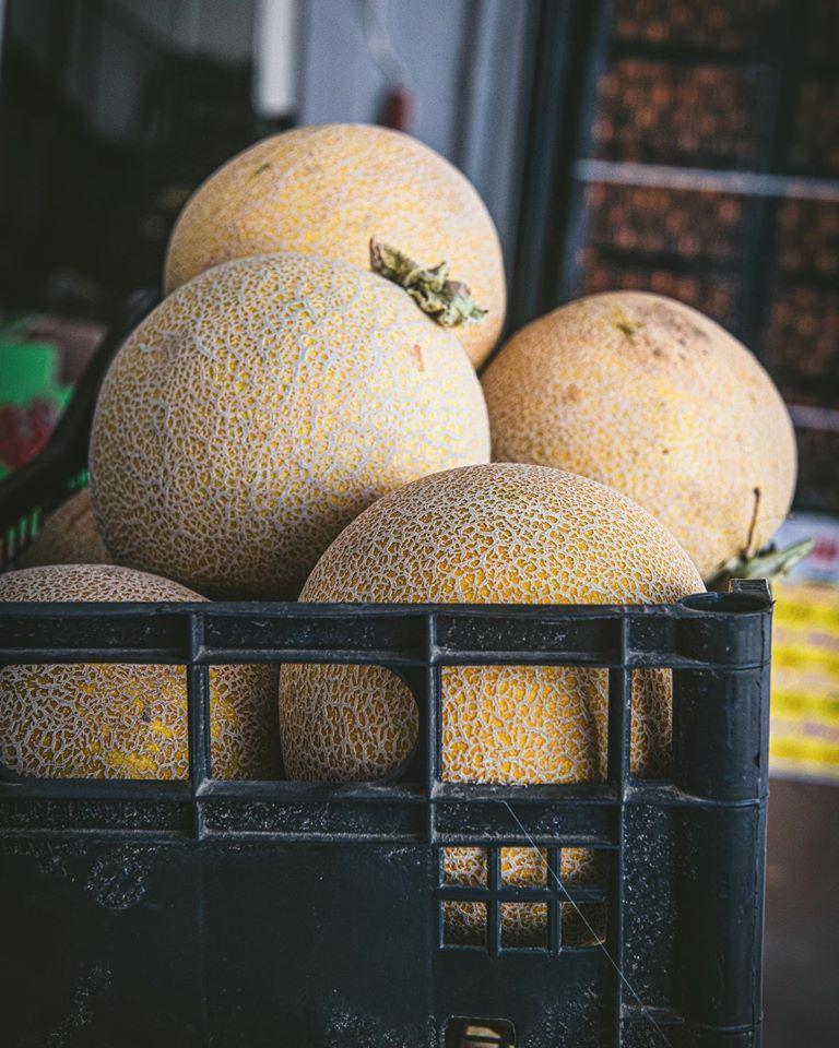 Πεπόνια,peponi,melon,galia,nature's fresh,horeca,χονδρική,τροφοδοσία