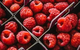 raspberry,ράσμπερυ,σμέουρο,χονδρική,τροφοδοσία,nature's fresh,horeca