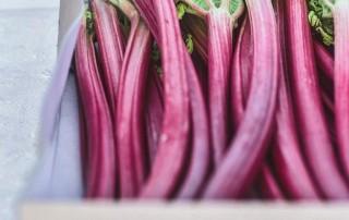 ραβέντι,ρούμπαρμπ,rhubarb,raventi,nature's fresh,horeca,χονδρική