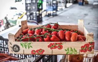 Τοματίνια San Marazno,τοματίνια βελανίδια,τομαίνια μακρόστενα,tomatinia,plum cherry tomatoes,nature's fresh,horeca,χονδρική,τροφοδοσία