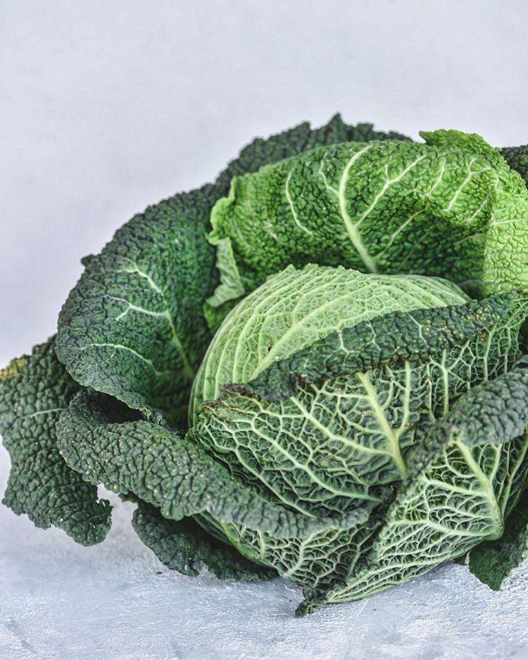 λάχανο σαβόι, σαβόυ,savoy cabbage,nature's fresh,horeca,χονδρική