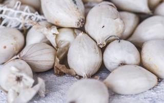 pearl onion,silverskin,κρεμμυδάκια,χονδρική,nature's fresh,horeca