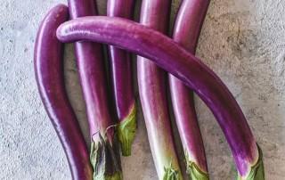Μελιτζάνα (Ασιατική),τσακώνικη,melitzana,eggplant,horeca,nature's fresh,χονδρική,τροφοδοσία