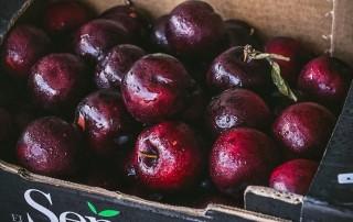 βανίλια,plums,χονδρική,τροφοδοσία,nature's fresh,horeca