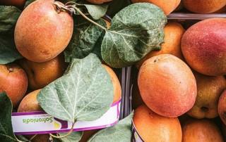 βερύκοκο,verikoko,χονδρική,τροφοδοσία,nature's fresh,horeca