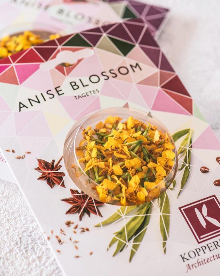 aniselouloudi,λουλούδι βρώσιμο,βρώσιμα άνθη,χονδρική,τροφοδοσία,nature's fresh,horeca